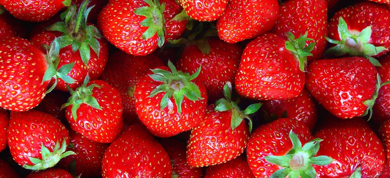 آشنایی با رایحه خوشبو توت فرنگی از دنیای میوه ها