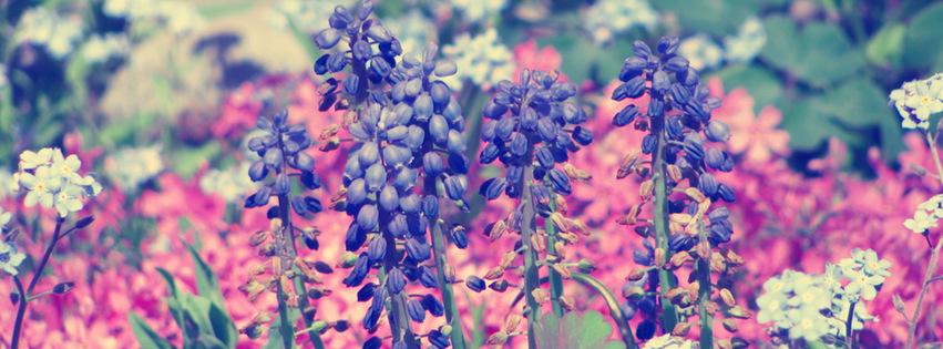 عطرهای پیشنهادی بهاره زنانه و مردانه (4)