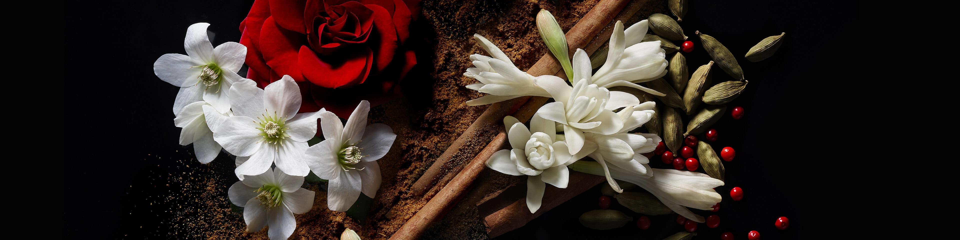 عطرهای پیشنهادی بهاره زنانه و مردانه